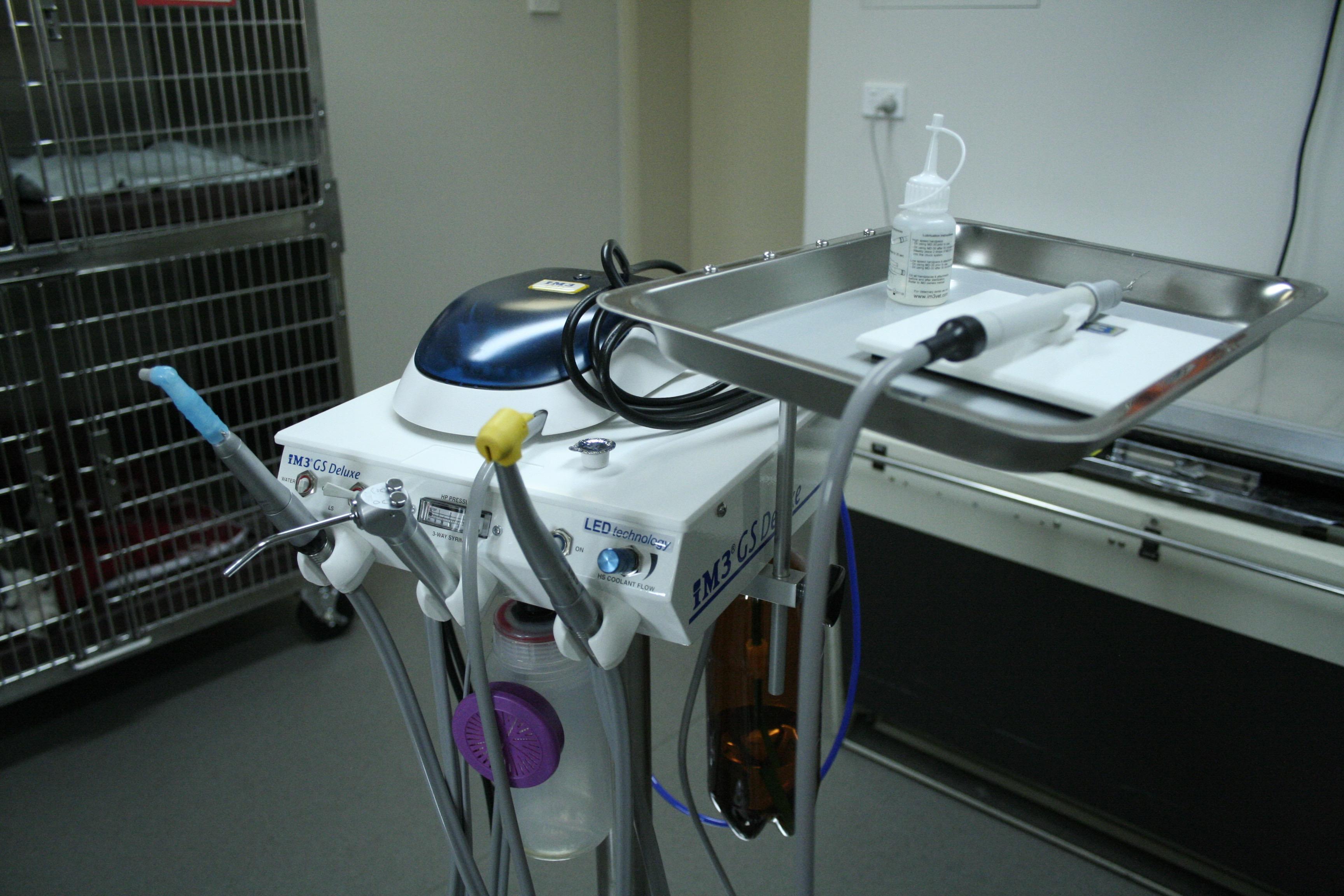 veterinary dental machine
