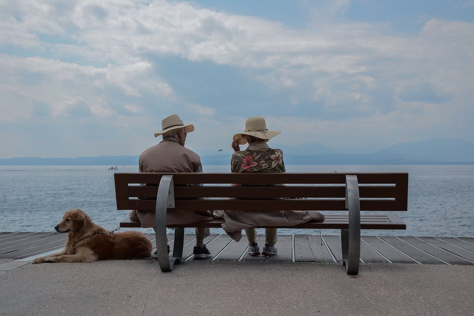 dog with arthritis sitting next to man and woman at beach